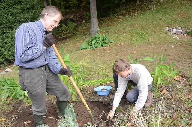 digging-704661_640