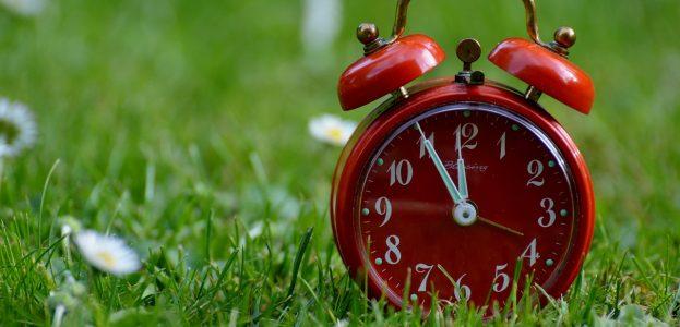 image of an alarm clock sitting on grass